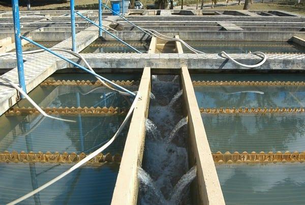 Estação de Tratamento de Água (ETA) II (Marcelo Martins)