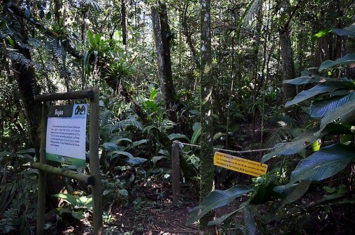 Parque São Francisco de Assis (Eraldo Schnaider)