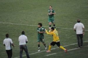Verdão aplicou goleada no Fluminense (Divulgação)