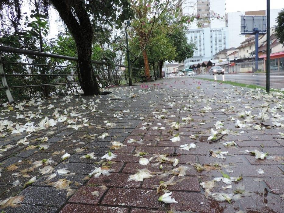 Tempo chuvoso em Blumenau - foto de Jaime Batista