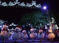 Magia de Natal encanta turistas anualmente em Blumenau