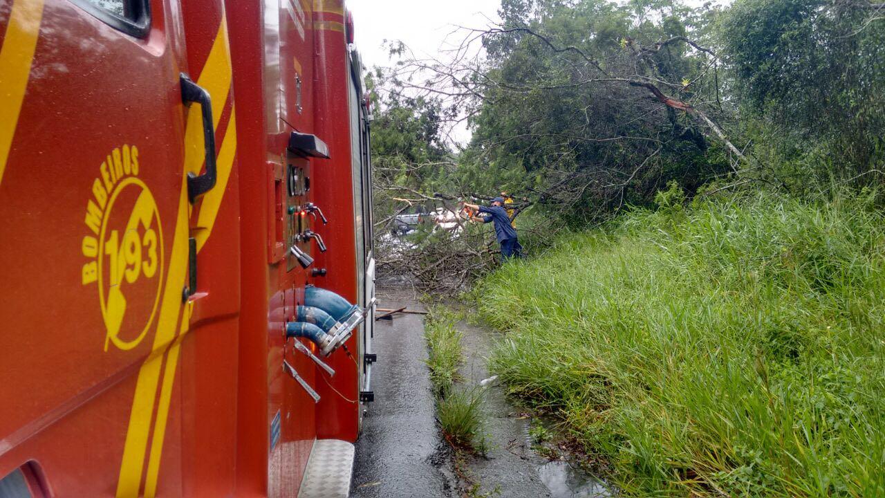 SC: Chuvas provocam deslizamentos e deixam desaparecidos