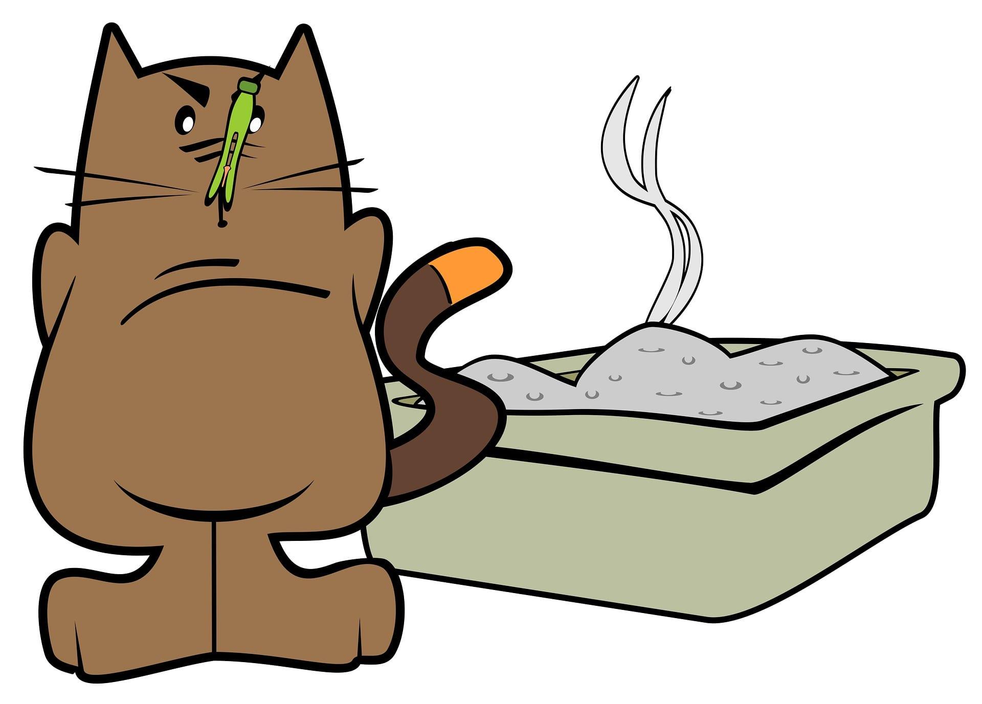 Conheça uma alternativa barata para a caixa de areia para gatos (Merio/Pixabay)
