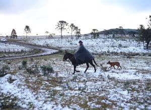 Neve em Urubici (Julio Cavalheiro / Secom)