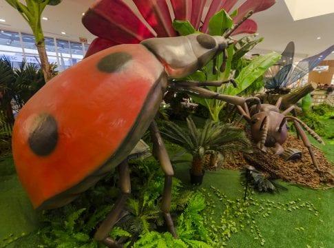 Exposição Natureza gigante