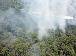 Bombeiros pedem apoio da população para evitar incêndios - foto do Corpo de Bombeiros