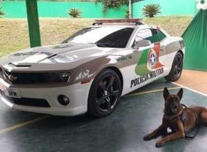 PM transforma Camaro apreendido em viatura policial