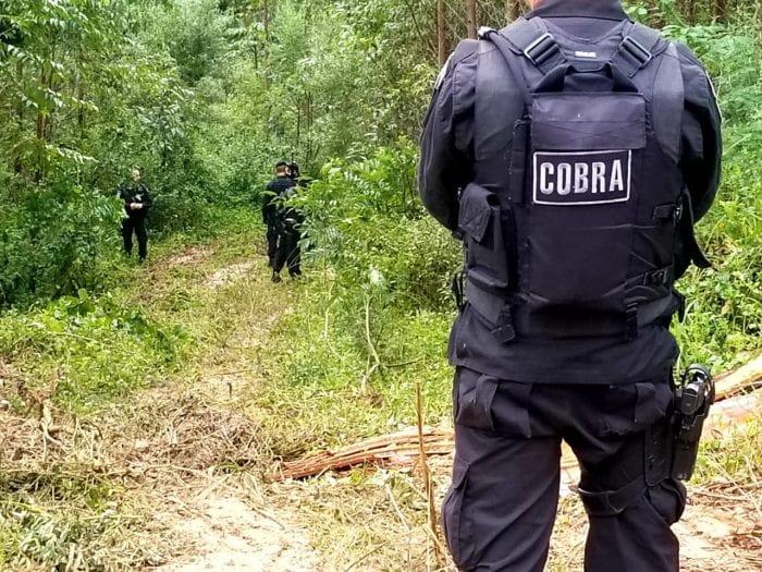 Gupo Cobra do Batalhão de Operações Policiais Especiais (Bope) vasculhando mata em busca de indícios