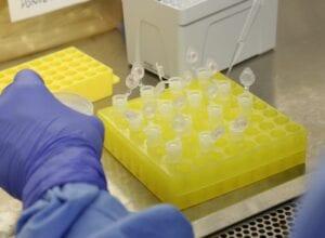 Sobe o número de suspeitas de infecção por coronavírus no país - foto de Josué Damacena
