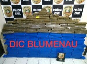 A droga foi localizada após denúncia de drogas em residência em Indaial - foto da Polícia Civil
